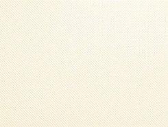 Плитка Rev.VISION TEXTURE BEIGE VSN464N 26x61