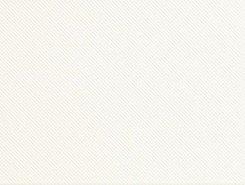 Плитка Rev.VISION TEXTURE WHITE VSN864N 26x61