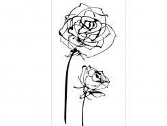 Decor Blancos Roses blanco 30 x 60