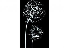 Decor Blancos roses noir 30 x 60