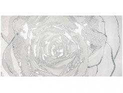 Плитка Dec.Omnia white silver 60x120