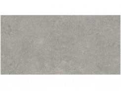 Плитка Керамогранит K945752R0001VTE0 Newcon Silver Grey R10A Rec 30х60