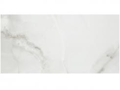 Плитка MARBLES FENIX Gris 60x120 см