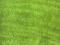 Плитка Calabria Pistacho 15x15