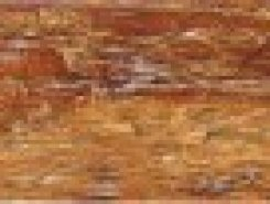 Borneo Beige 8x33,3