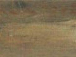 Montprivato Caoba15x60