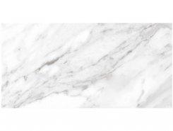Плитка North Gloss White 49,1x98,2