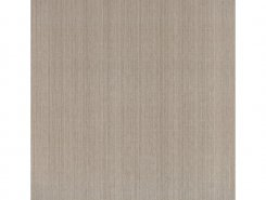 Плитка Victorian 581 Floor BASE VIZON MATT 60x60