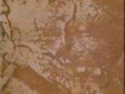 AN03 ступень неполир 30х30 (ESTIMA)